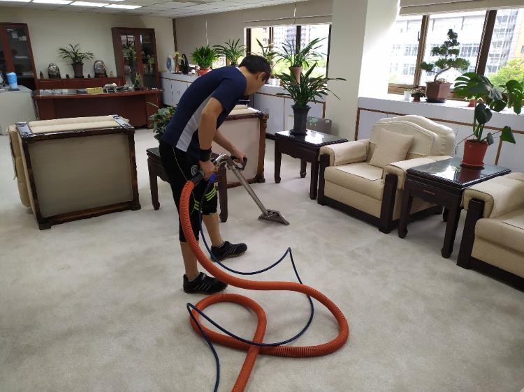 辦公室地毯處理