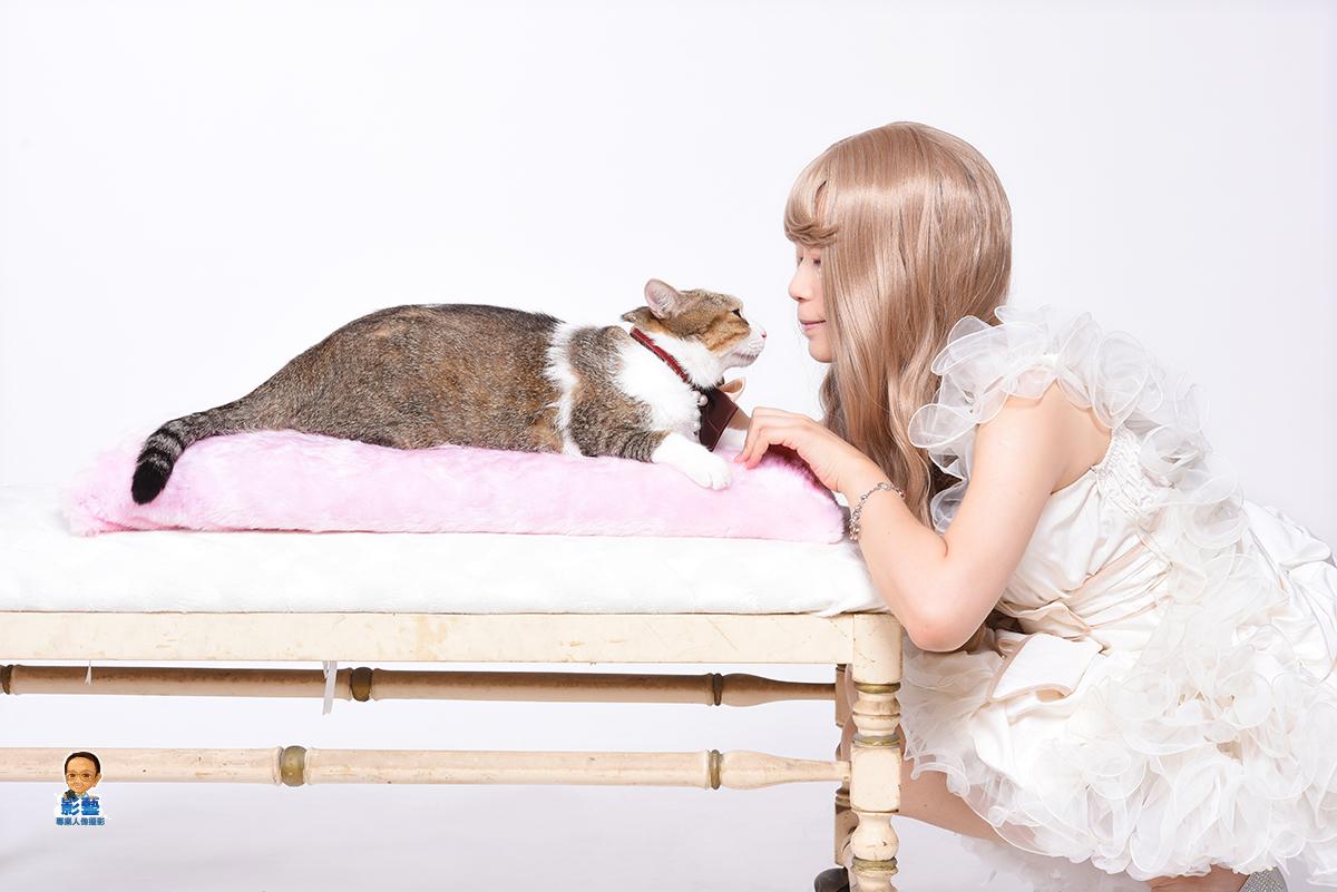 影藝攝影-棚內貓星人攝影