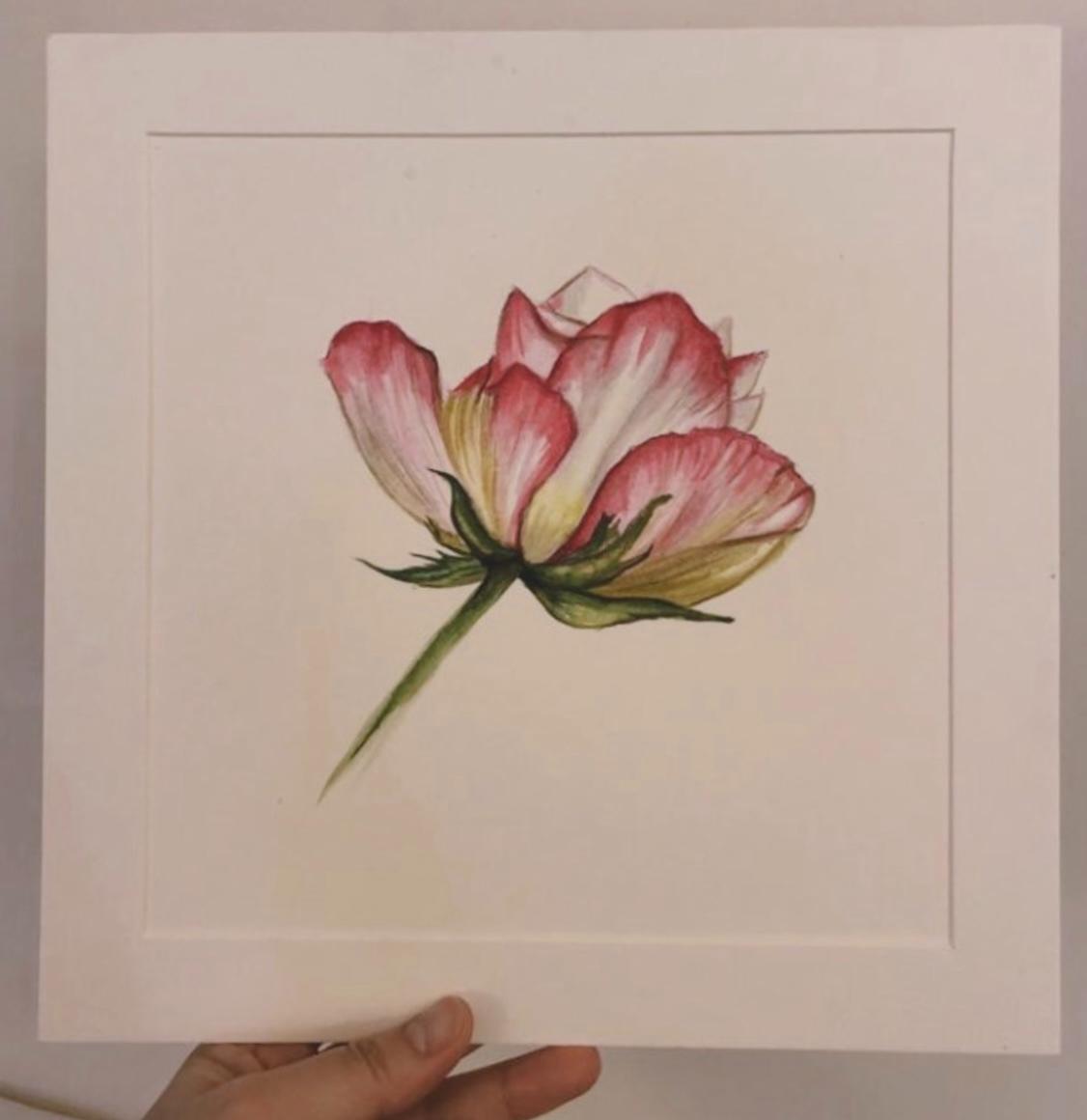 水彩 watercolor