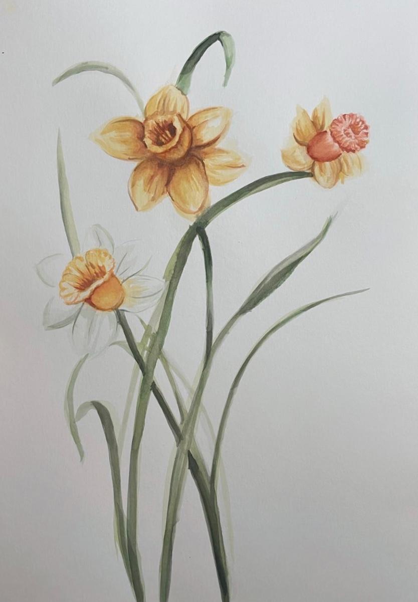 水彩 watercolour