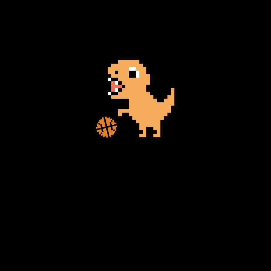 Starter Basketball