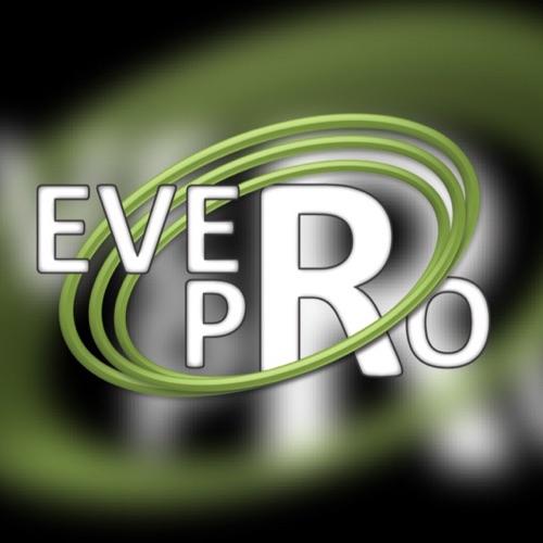 Ever Pro Solutions Ltd.
