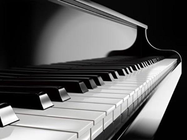 蓬蓬碰碰鋼琴家教