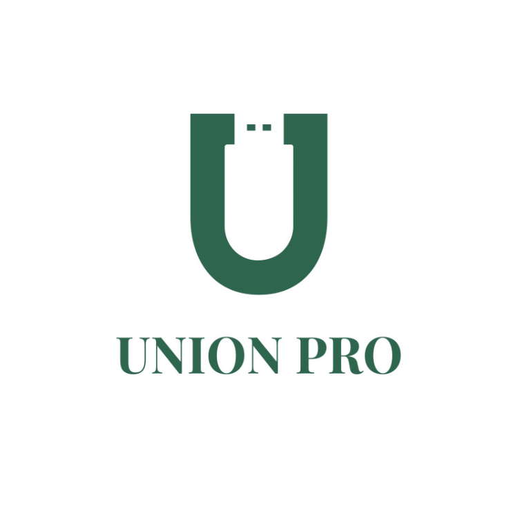 Union Pro Services Ltd