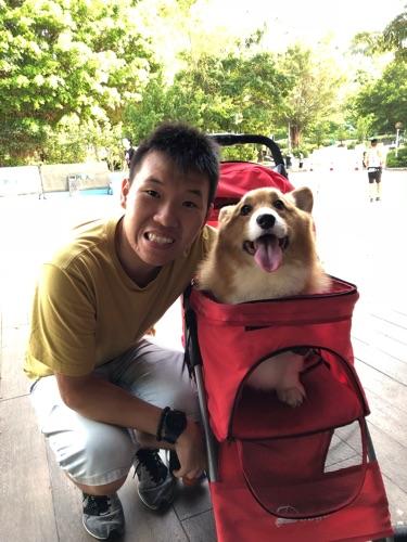 寵物小精靈訓練員丨William Leung