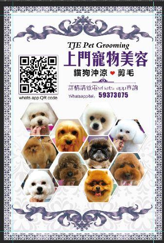 TJE Pet Grooming