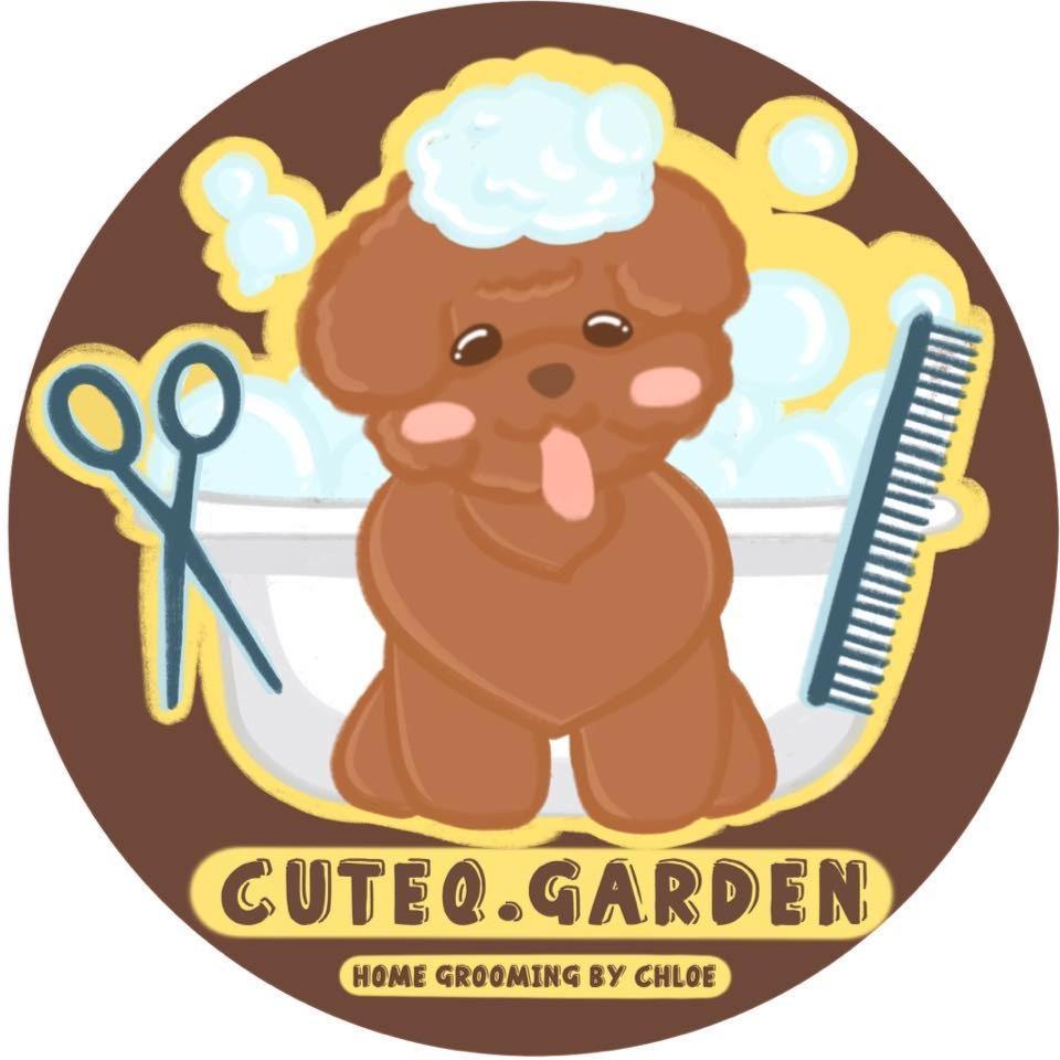 持有國際Diploma犬科及貓科美容證書丨CuteQ.Garden上門寵物美容服務
