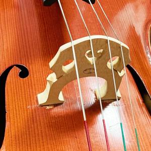 布樂藝術中心 Pluto Music Company